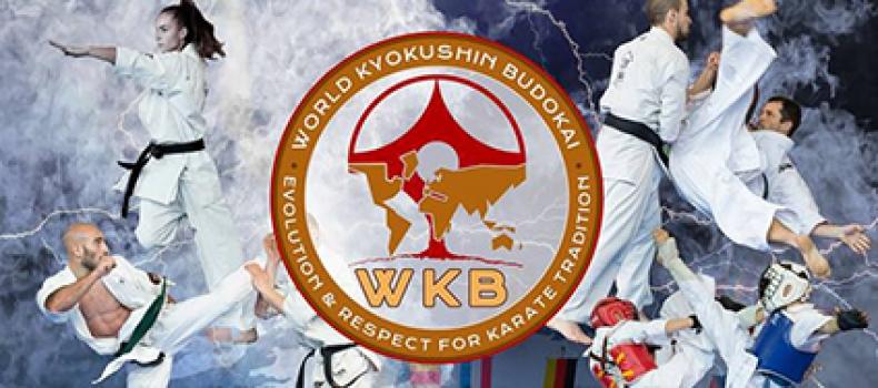 CAMPEONATO KYOKUSHIN BUDOKAI